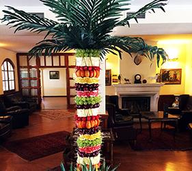 gyumolcspalma-palma